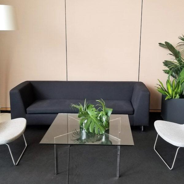 Ray Lounge and Estilo sofa_edit